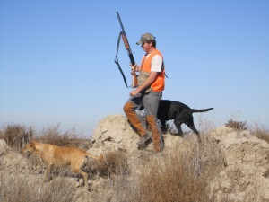 Pheasant Hunt with Steel...